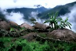 Bild von 3 Days / 2 Nights Jayapura pack Tour