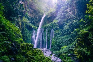 Bild von LOMBOK PACKAGE TOUR Village + Waterfall 4N / 5D