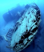 Bild von 09 Days / 11 Nights Padaido Scuba Diving