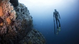 Bild von Nihiwatu Sumba Magic Mountain dive